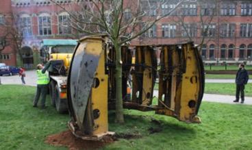 tree-transplanting